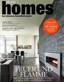 April 2014 - Bilanz Homes - CEO Interview - FC